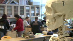 Skeleton in Science class with middle students in the back ground (2 of 2) Footage