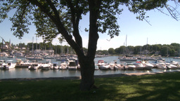 A small harbor with docked boats. (1 of 2) Live Action