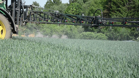 small current pesticide fertilizer on young corn field Footage