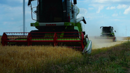 TULCEA, ROMANIA - JUNE 20 2015: Combine Harvester Gathers The Wheat Crop Footage