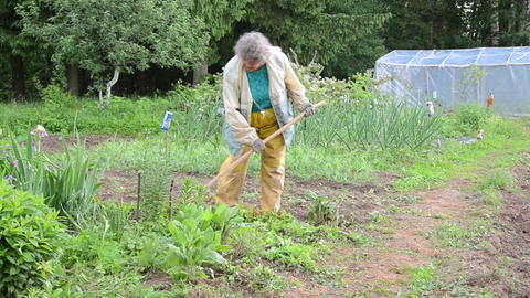 woman with working clothes grub hoe weeds from the garden Footage