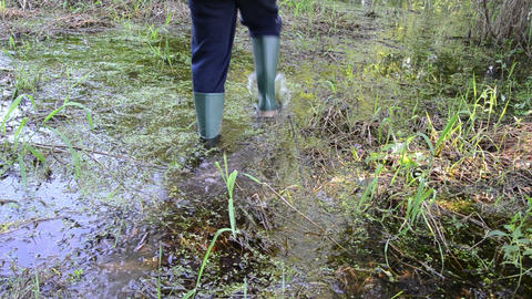 man goes through slimy swamp with rubber boots Footage