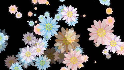 Flower Particle stock footage