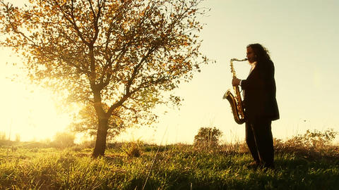 man play on golden saxophone in nature instrumental blow jazz instrument Live Action