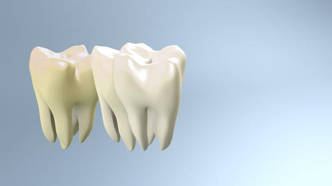 tooth contrast Stock Video Footage