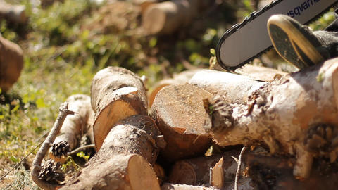 cutting Wood electric saw firewood forest ecology chop... Stock Video Footage