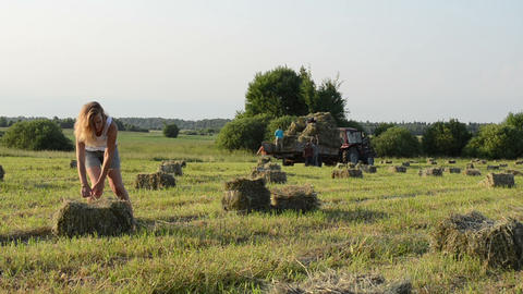 Beautiful farmer girl carry bales of hay straw and tractor drive Footage