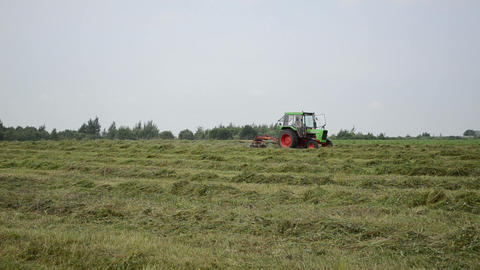 tractor turning raking cut hay in field Live Action