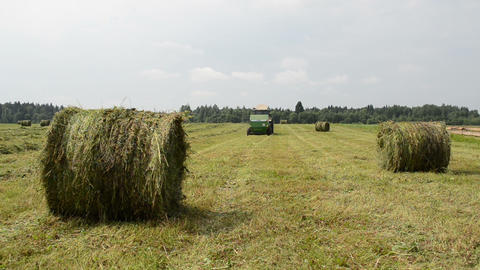 Straw bales agricultural tractor gather hay near village houses Footage