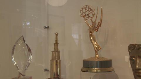 Award display case (1 of 1) Footage