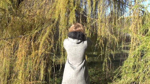 Woman in grey coat walk between larch tree branch in autumn park Footage