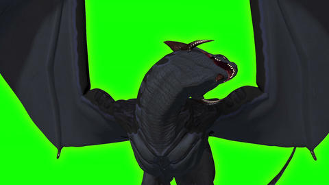 Rise Of The Dragon (Green Screen) stock footage