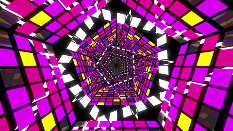 VJ Loops Pentagonal Tunnels