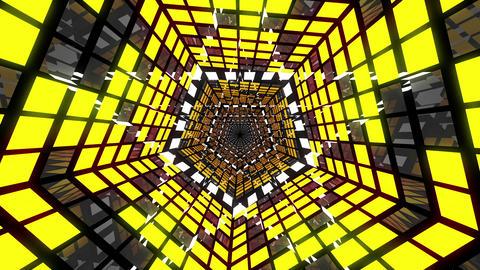 VJ Loops Pentagonal Tunnels 0