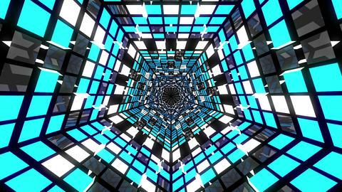 VJ Loops Pentagonal Tunnels 1