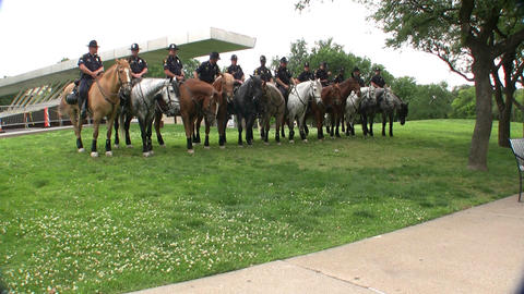 Dallas Mounted Police Division stock footage