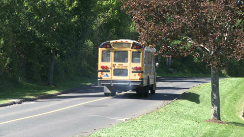 School bus on the road (1 of 2) Live Action