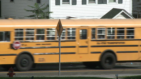 School bus pick-up (1 of 3) Live Action