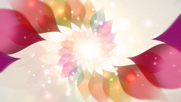 Dream Petals Tunnel stock footage
