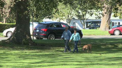 Couple walking dog on sidewalk around park (3 of 3) Footage