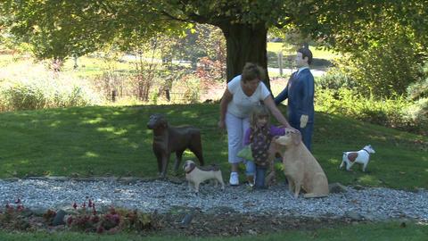 Dog training (1 of 3) Footage