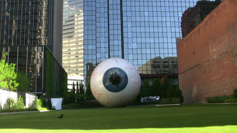 Giant Eye With Bird Walking By Footage