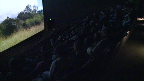 Crowds enjoying a nature documentary (5 of 6) Live Action