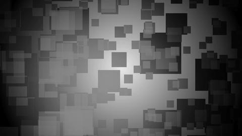 monochrome dancing square Animation