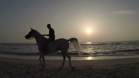 Rider On Horseback At Sunset And The Sea stock footage