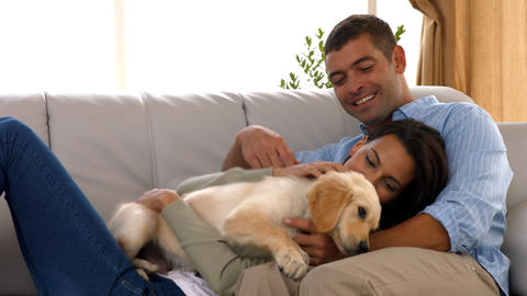 Happy couple with their puppy at home Footage