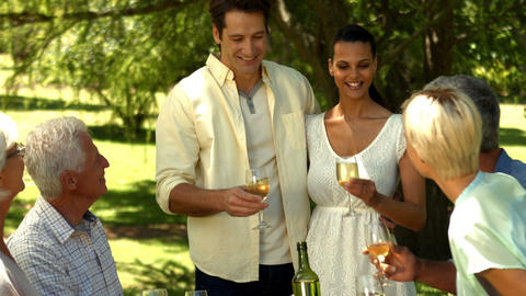 Romantic couple toasting with family in park Footage