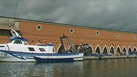 Palma de Mallorca -Fishing harbor Stock Video Footage
