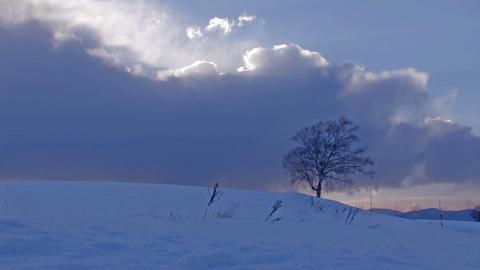 Winter landscape in Biei,Hokkaido,Japan_2 Stock Video Footage