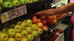 Fresh food displays in a market (2 of 6) Footage