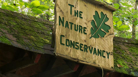 Nature Conservancy Trail (7 of 9) Footage