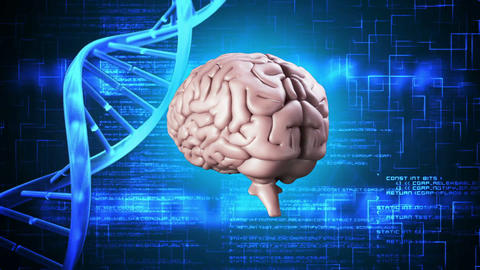 Brain spinning on dna background Animation