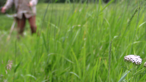 foreground focus meadow gardener mows grass with petrol trimmer Live Action