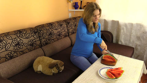 pregnant woman girl cut fresh watermelon. Preparing healthy food Footage