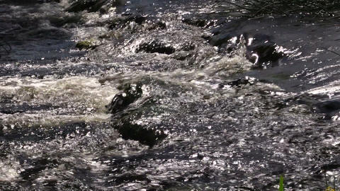 Closeup of river water stream flow between stones. Zoom out Footage