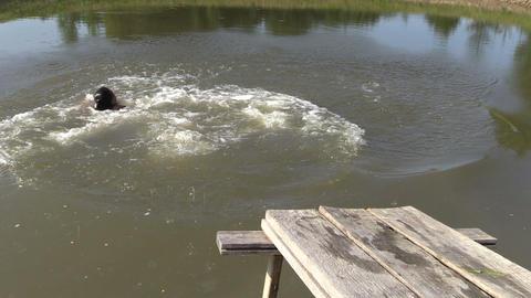 People jump from wooden bridge in pond lake water Footage