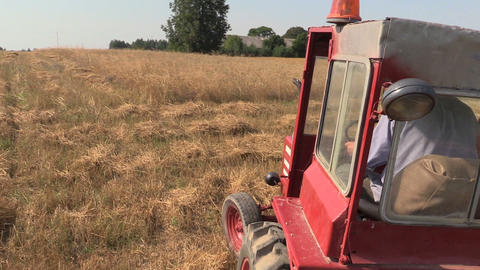 Farmer man drive red old tractor between farm agriculture fields Footage