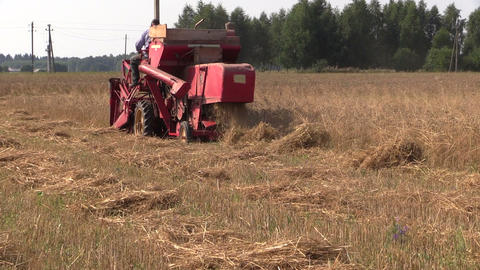 process of harvesting with combine in barley field. Zoom out Footage