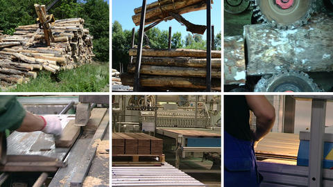 Wood transportation. Floor parquet production. Clips collage Footage