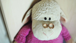 Sheep Toy - Wedding Rings On The Nose stock footage