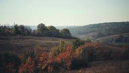 Panorama Hills stock footage