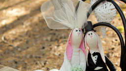 Wedding Decor - Hares Bride And Groom On A Chair In The Forest stock footage