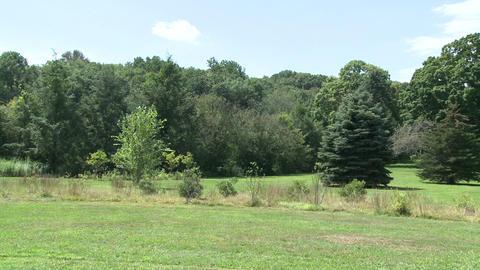 2011 08 26 Trumbull Monroe 145 Footage