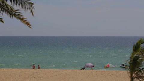Phuket - beautiful windy beach and palm trees Live Action