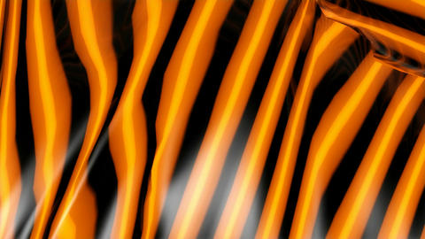 Tiger Color Pattern stock footage