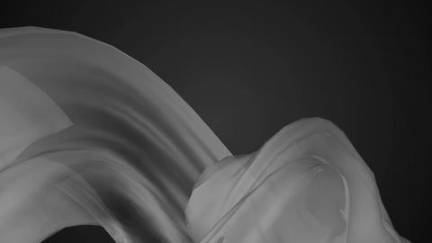 gray color warp Animation